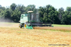 2015/07/30: Oat and wheat harvest in full swing