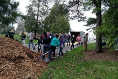 Clean-up at Memorial Park